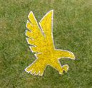 Custom Outfield Logo Stencil Product