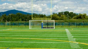 Basic Guide to Synthetic Turf: Part 1