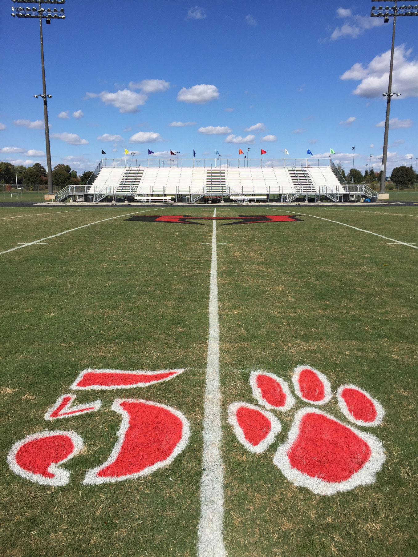 Fields Of Excellence Club Pioneer Athletics