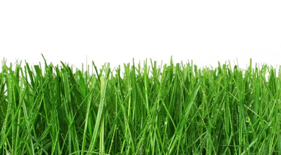 Natural Grass Paints