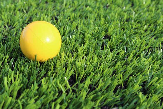 Photo of the Synthetic Turf