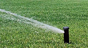 Summer Turf Tip: Irrigation Audit