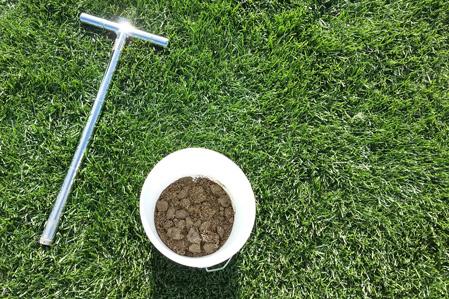 >Turf Tips: Soil Testing