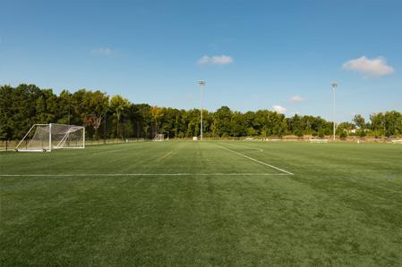 Sports Fields on a Budget