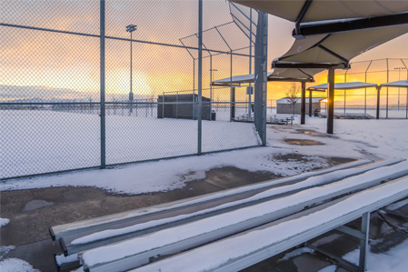Turf Tips: Snow Removal